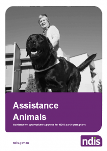 Assistance animal guidance